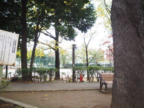 東京百景 又吉直樹 杉並区馬橋公園の薄暮