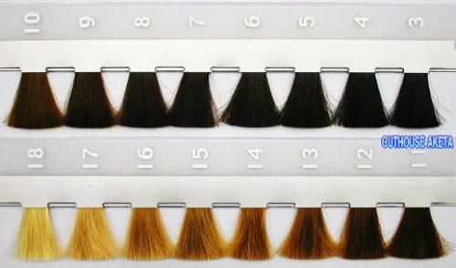 髪の毛 レベルスケール