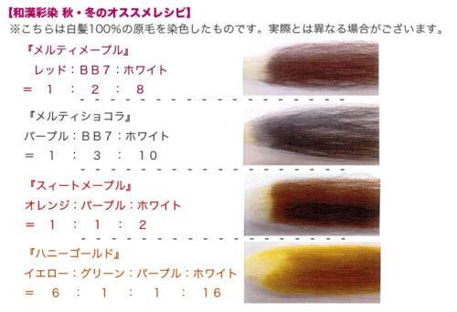 和漢彩染 明るい白髪染め ヘナ 草木染め 香草カラー